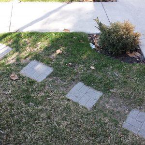 Cement Squares