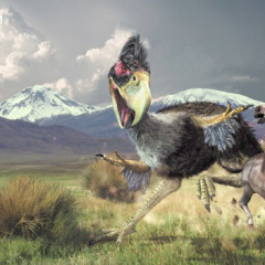 Why Dinosaurs Are Overrated