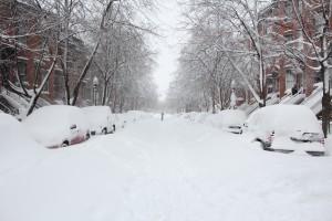 Snow Day Generator